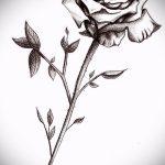 эскиз тату розы на бедре - смотреть прикольную картинку 5