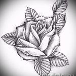 эскиз тату розы на плече 3