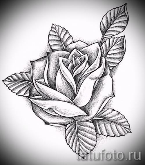 Тату эскизы розы для девушек