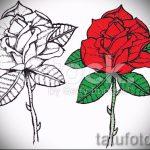 эскиз тату розы на руку - смотреть прикольную картинку 10