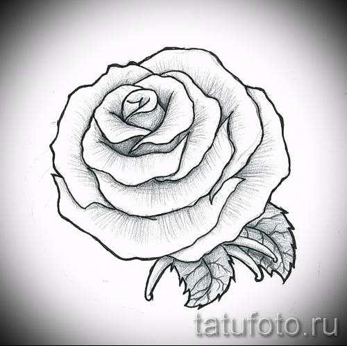 Эскиз тату розы на руку