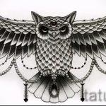 эскиз тату сова на груди 1