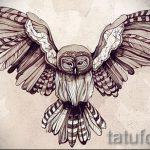 эскиз тату сова на груди 3