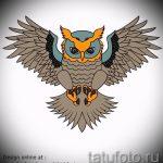 Eule Tattoo Skizzen amerikanische 4