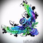 Eule Tattoo Skizzen amerikanische 5