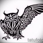 Eule Tattoo Skizzen amerikanische 8