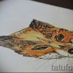 Fuchs Tattoo farbigen Skizzen - siehe Bilder 25,04-2.016 8