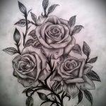Skizze der Tattoo-Rose auf ihrer Hüfte - suchen cool Tapete 1