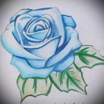 Skizze der Tattoo-blaue Rose - cool Tapete zu sehen 1
