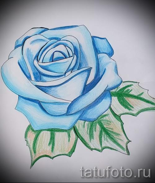 skizze der tattoo blaue rose cool tapete zu sehen 1. Black Bedroom Furniture Sets. Home Design Ideas