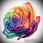 Skizzen tätowieren farbige Rosen - cool aussehen Tapete 1
