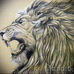 conceptions de tatouage lion sourire sur ses épaules - images pour les tatouages de 29042916 1