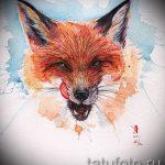 croquis de tatouage fox - voir photos 25.04-2016 3