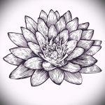 fleur de lotus croquis de tatouage - dessins de 26-04-2016 1