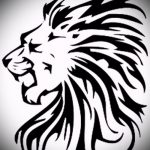 lion conceptions de tatouage pour les filles - les images pour les tatouages de 29042916 1