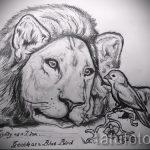 lion de tatouage réalisme - images pour les tatouages de 29042916 1