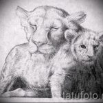 lion tattoo designs on the forearm - images for tattoos from 29042916 2