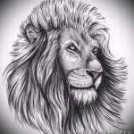 lion tattoo designs realism - images for tattoos from 29042916 2