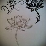 lotus flower tattoo sketches - drawings by 26.04.2016 4