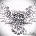 owl tatouage esquisse américaine 2