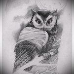 owl tatouage esquisse américaine 3