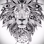 sketch of tattoo lion with feathers - images for tattoos from 29042916 1