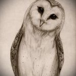 sketch of tattoo owl on hand 2