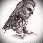 sketch of tattoo owl on hand 4