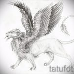 sketches tattoo lion with wings - tattoo pictures from 29042916 3
