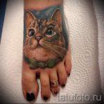 тату на ступне кошка - фото пример готовой татуировки от 23.05.2016 1