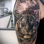 тату тигра на руке парня - фото пример 2