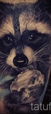 Тату енот – фото готовой татуировки для материала про значение 1