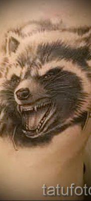 Тату енот – фото готовой татуировки для материала про значение 43