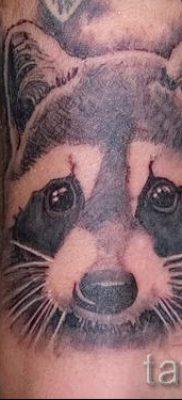 Тату енот – фото готовой татуировки для материала про значение 6