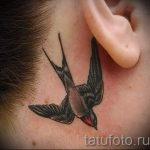 тату ласточки за ухом - фотографии вариантов готовых татуировок 1