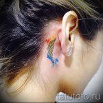 тату перо за ухом - фотографии вариантов готовых татуировок 17