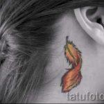 тату перо за ухом - фотографии вариантов готовых татуировок 4