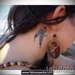тату перо за ухом - фотографии вариантов готовых татуировок 6