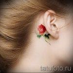 тату роза за ухом - фотографии вариантов готовых татуировок 4