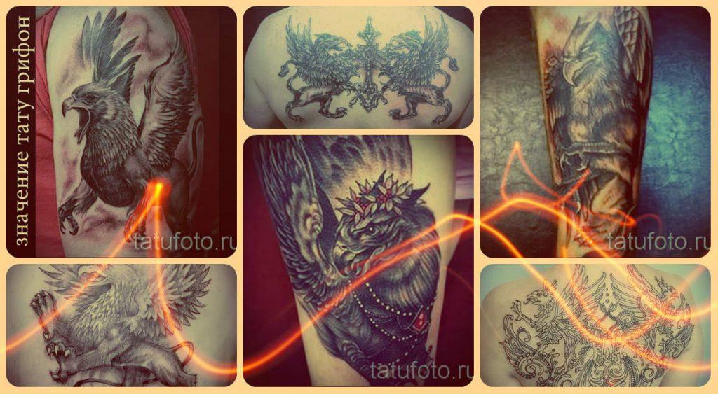 Значение тату грифон - лучшие примеры готовых татуировок