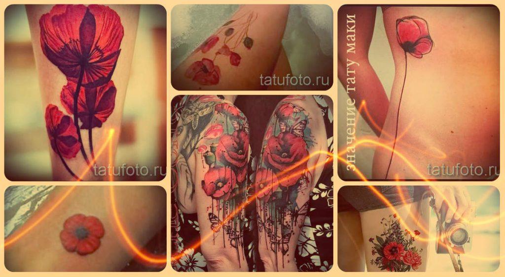 Значение тату маки и примеры фото самых интересных готовых тату