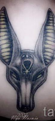 анубис тату на спине – фото татуировки для статьи про значение 4