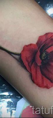 рисунок мак для тату – фото для статьи про значение татуировки 2