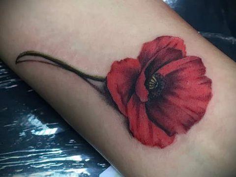 рисунок мак для тату - фото для статьи про значение татуировки 2