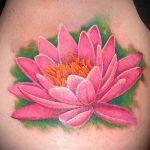 тату лилия водяная - фото пример татуировки от 13072016 4