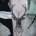 тату олень в треугольнике - фото пример классной татуировки от 14072016 1