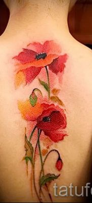 Poppies tattoo on his back – photos for an article about the importance of tattoos 1