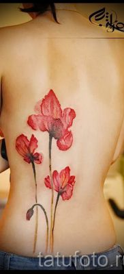 Poppies tattoo on his back – photos for an article about the importance of tattoos 4