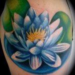 Tattoo Seerose - Foto Beispiel der Tätowierung 13072016 1