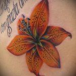 Tattoo Tiger Lily - Foto Beispiel der Tätowierung 13072016 1